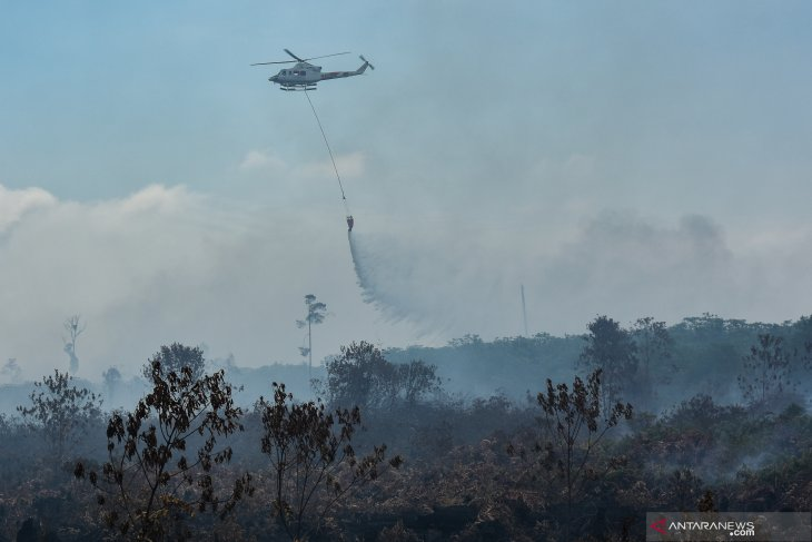 10 helicopters, one Cassa deployed to fight Riau's forest fires