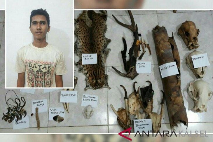 Polisi Tangkap Penjual Potongan Tubuh Satwa Dilindungi