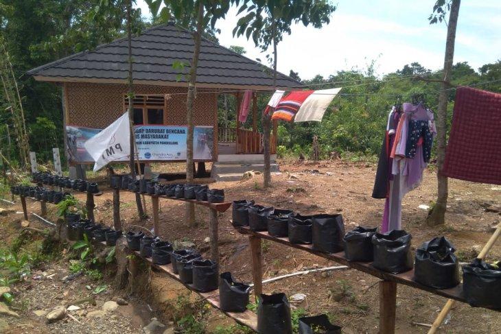 PMI menanam tanaman holtikultura di lokasi bencana