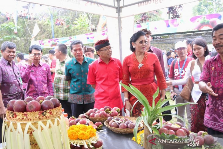 Gubernur Bali rancang festival agro tahunan