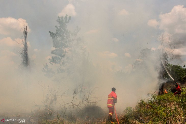 Pekanbaru shrouded in haze from forest fire