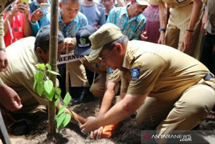 Gubernur Babel tanam bibit lada di Desa Payung Bangka Selatan