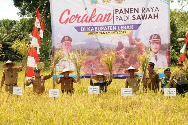 Bupati Iti Octavia minta petani tingkatkan produksi beras