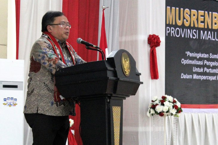 Maluku's economy still depends on primary sector: Minister