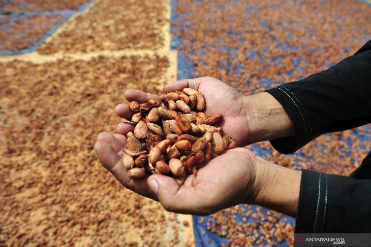 Industri 4.0 potensial memacu daya saing hasil perkebunan