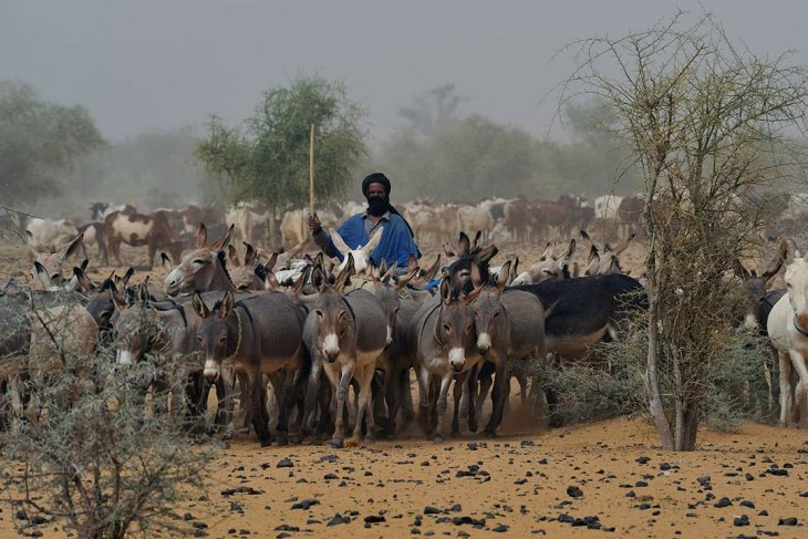 Pemerintah Mali mengundurkan diri pasca-pembantaian