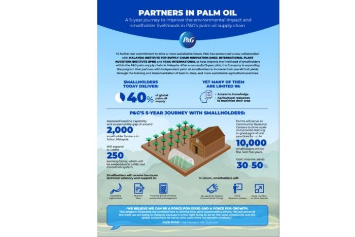 P&G partners to improve environmental impact and smallholder livelihood in palm oil supply chain
