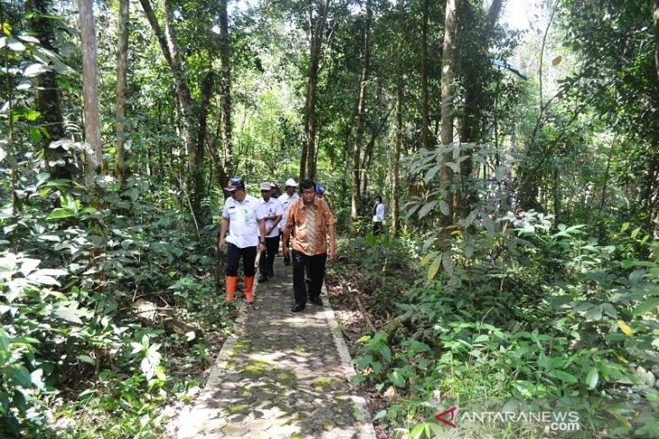 Only Balangan has a botanical garden in South Kalimantan: Balitbangda