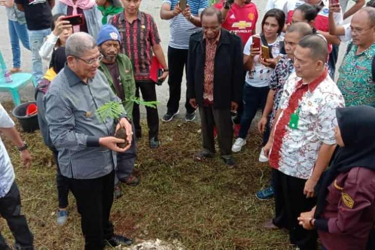 FKPA Tual-Malra tanam 1.000 bibit pohon di Langgur