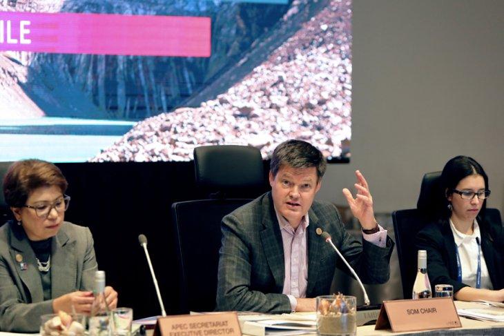 APEC senior officials reassert unstinted support for multilateralism