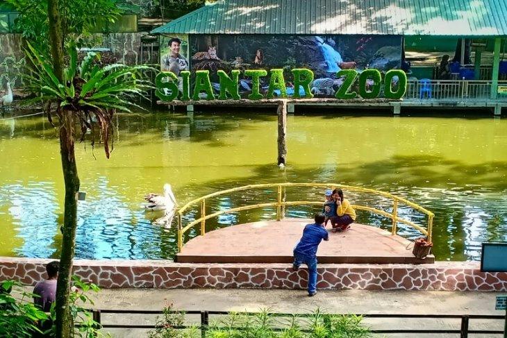Hadapi libur Idul Fitri, Taman Hewan Pematangsiantar dirikan