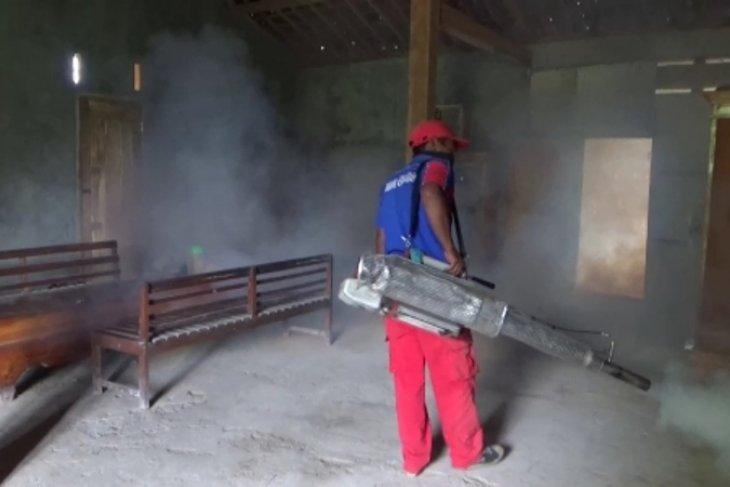 Lima warga Kabupaten Ngawi meninggal akibat demam berdarah