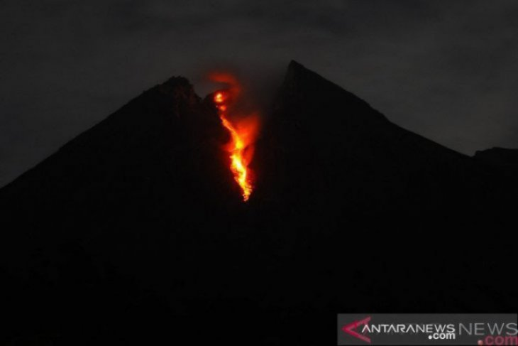 Mount Merapi spews incandescent lava as far as 870 meters