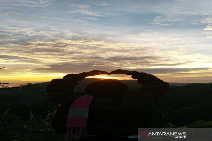 Karena jalan rusak, jumlah pengunjung Kebun Teh Tritis Kulon Progo anjlok