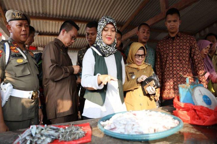 Wagub Lampung Kembangkan Potensi Teluk Lampung