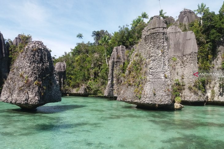 Raja Ampat focuses on constantly maximizing quality of tour guides