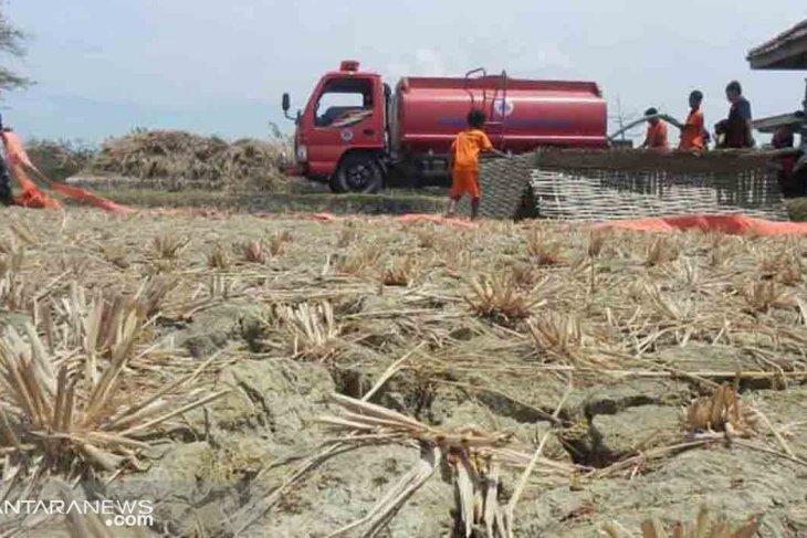 Puluhan desa di Sampang dilanda kekeringan