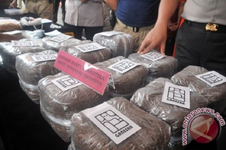 Pengguna narkoba tembakau sintetis divonis 17 tahun penjara