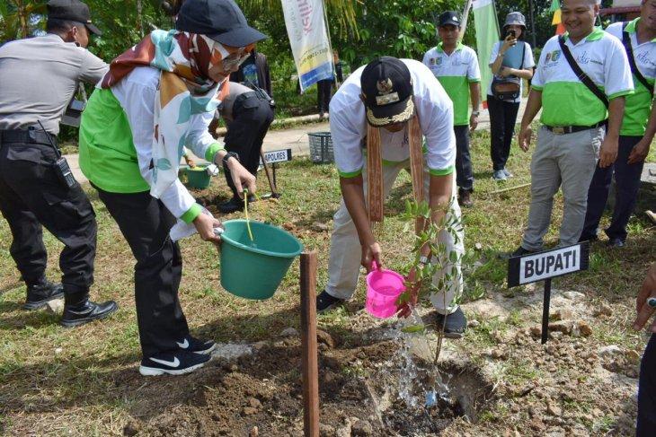 Bupati Sintang tanam pohon peringati hari lingkungan hidup