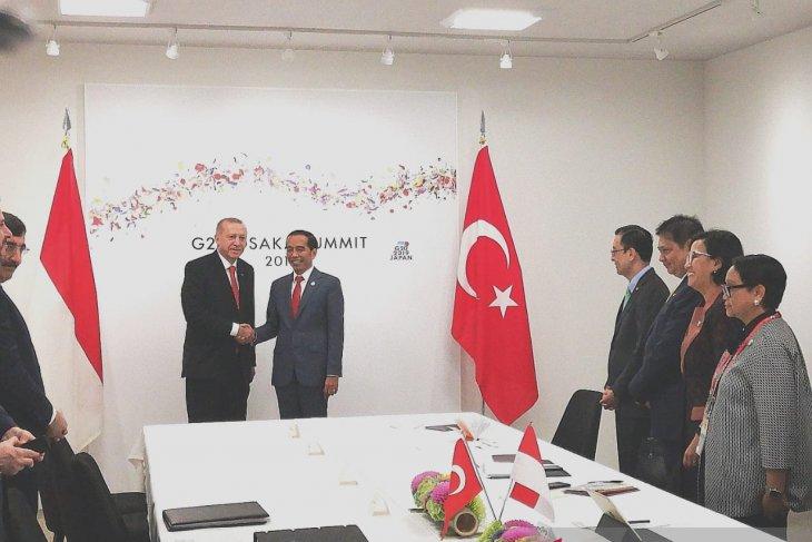Indonesia-Turkey meeting discusses plans for Erdogan's Indonesia visit