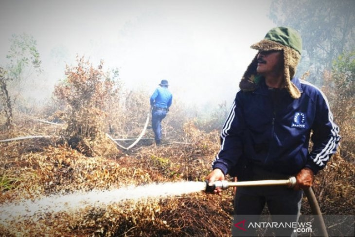 Kebakaran lahan mulai melanda Kalimantan Tengah