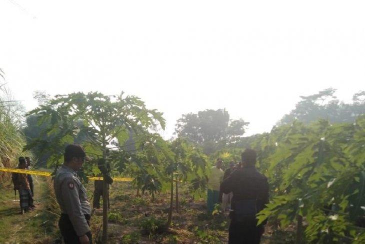 Polisi Kediri selidiki temuan jasad pria di kebun pepaya