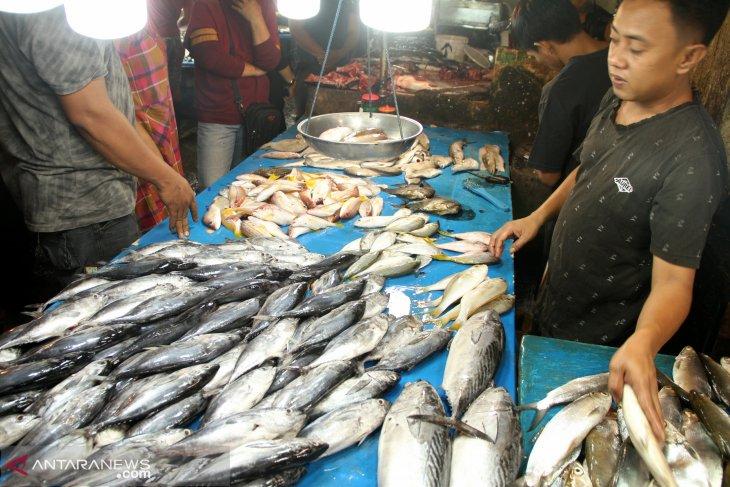 Mahalnya Harga Ikan Di Pasar Tradisional Pontianak Antara News Kalimantan Barat