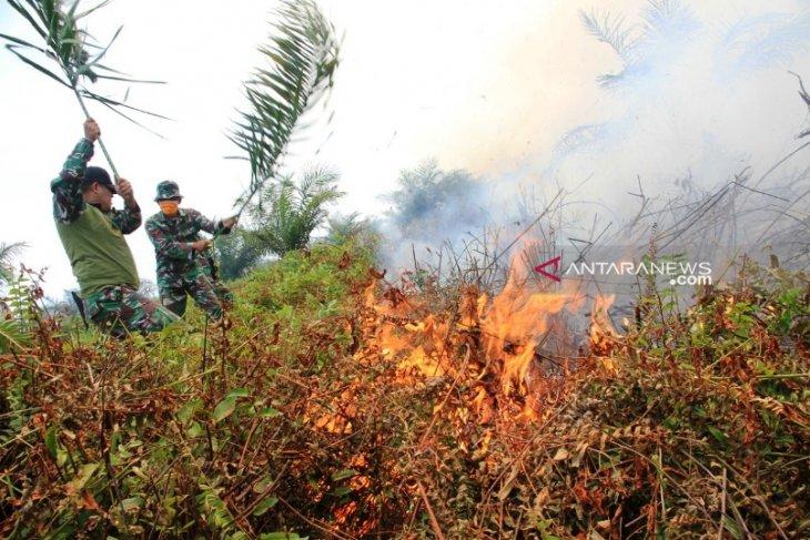 BPPT: Jangan buka lahan dengan membakar