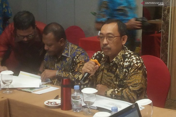 Indonesia to boost petrochemical development in Bintuni, W Papua