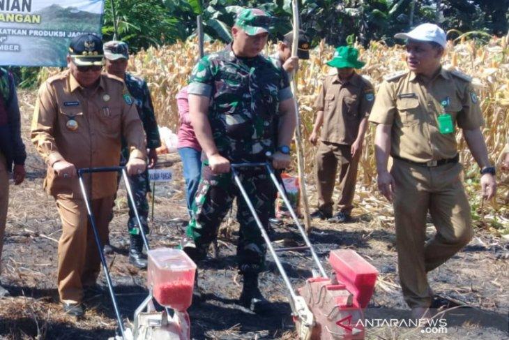 Video Dandim 1001: Dampingi petani sukseskan program pemerintah
