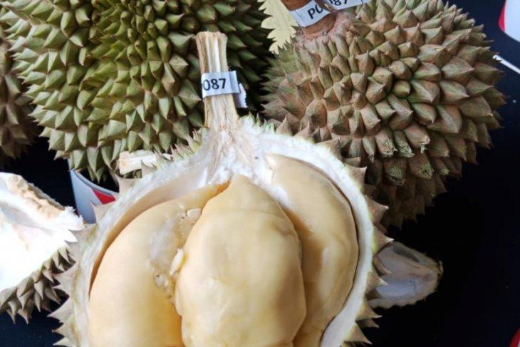 Kontes Durian di Negeri Jiran