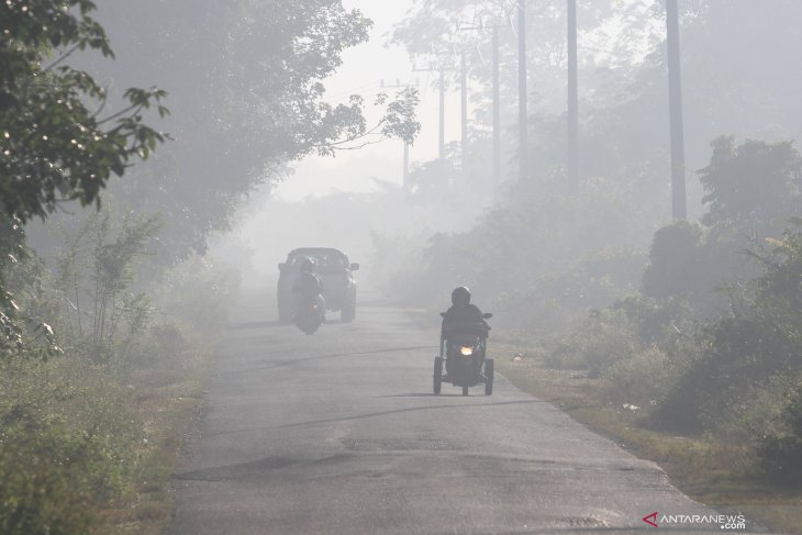 Forest fires seared through 30,477 thousand hectares area in July