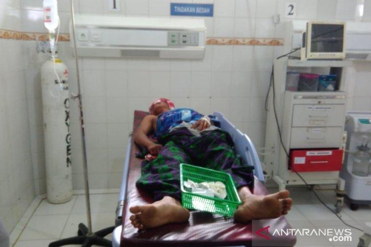 Syafei (29)  luka-luka diserang kawanan beruang