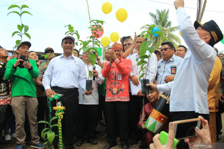 Agriculture Minister launches BUN 500 program in Central Kalimantan