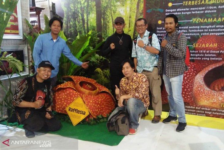 KPPL kenalkan flora Rafflesia arnoldii di Festival Bumi Rafflesia