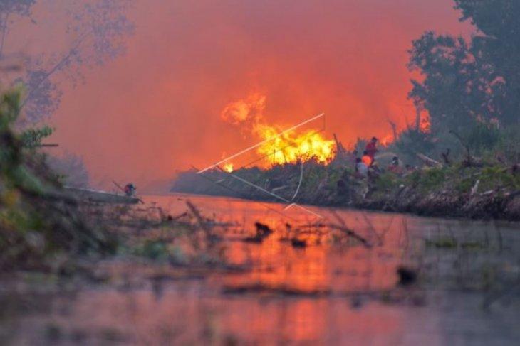 Kobaran api karhutla di Riau