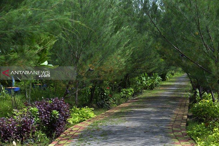 Suhu udara Surabaya turun dua derajat Celcius
