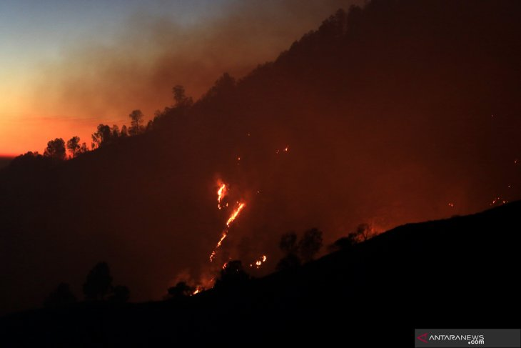 Fire catches forest on Mt Merapi's slope