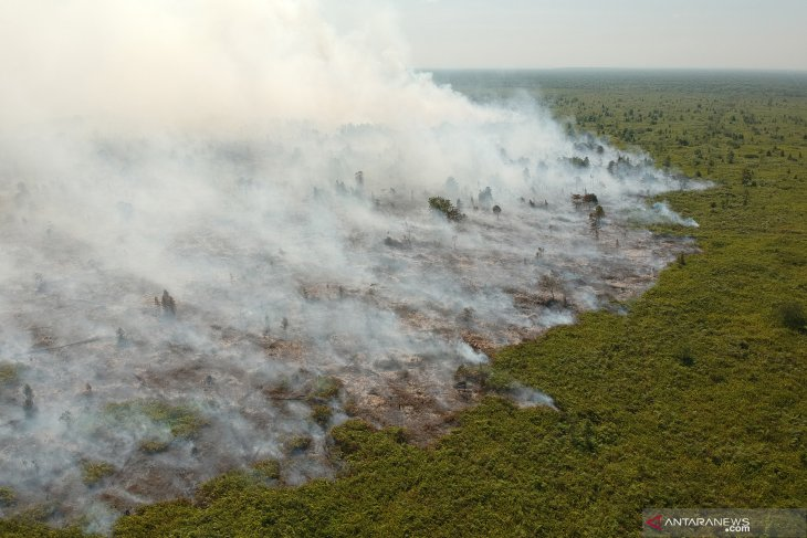 BNPB head invites nation's components to stop forest, land fires