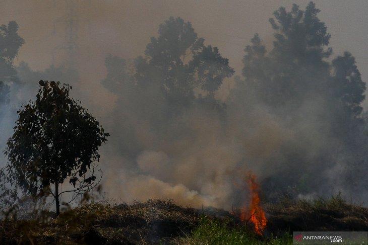 BMKG confirms 85 hotspots detected across Sumatra Island