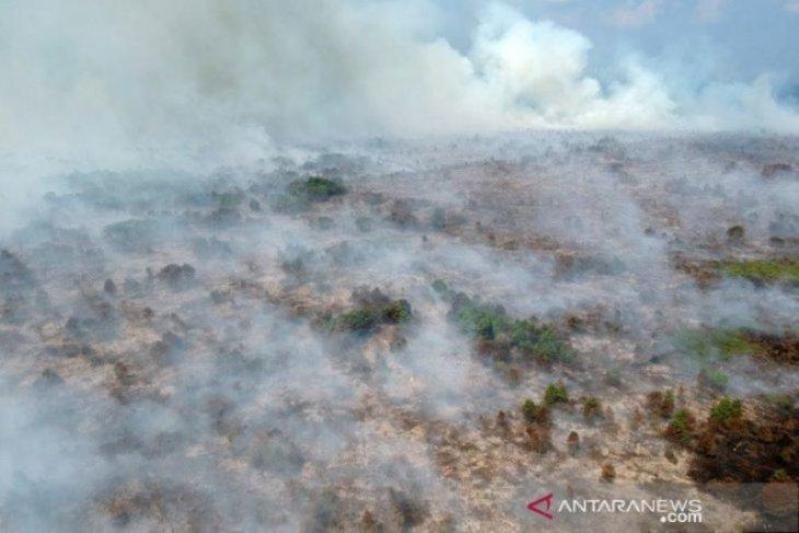 BMKG: 264 titik panas di Sumatera, Jambi 53 titik