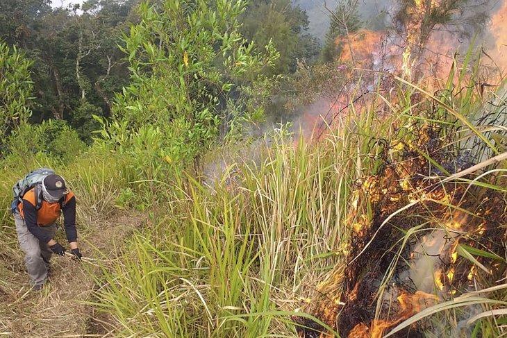 Tujuh titik bara api di Gunung Arjuno belum padam