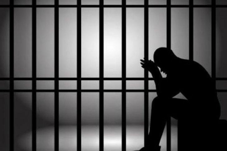 Hakim vonis pengguna ganja 22 bulan penjara