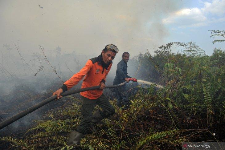 BMKG identifies 18,895 hotspots in Southeast Asia, Papua New Guinea