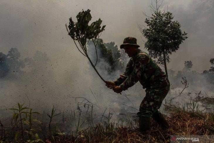 Riau plans to issue wildfire emergency preparedness status