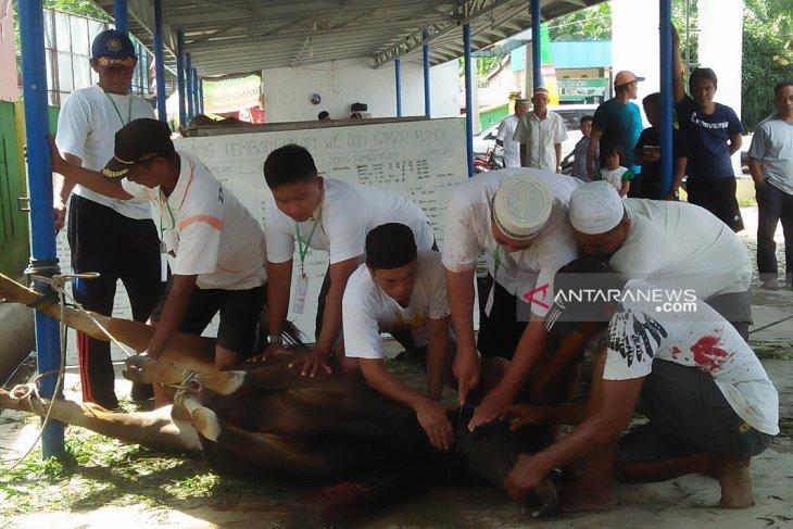 Jumlah hewan kurban Masjid Darussalam Mukomuko turun