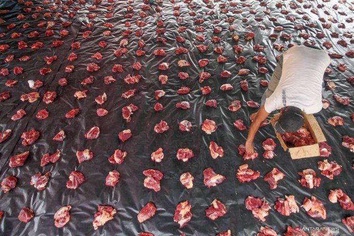 Dari hewan kurban lepas hingga Idul Adha tanpa plastik