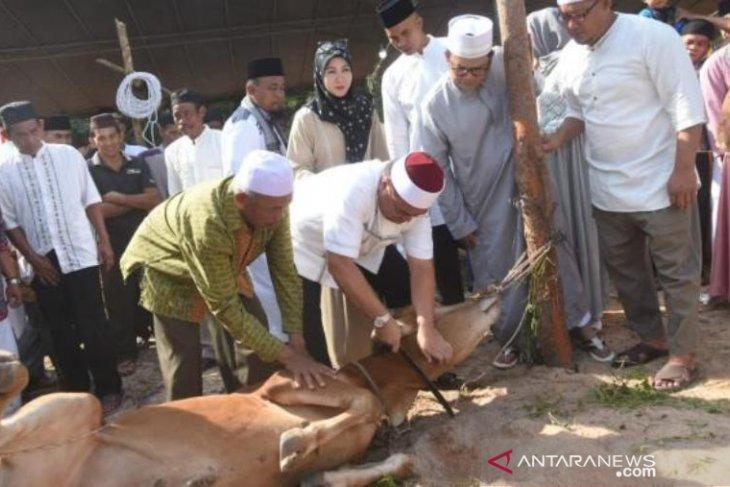 Gubernur Erzaldi potong enam sapi kurban di Desa Air Bara