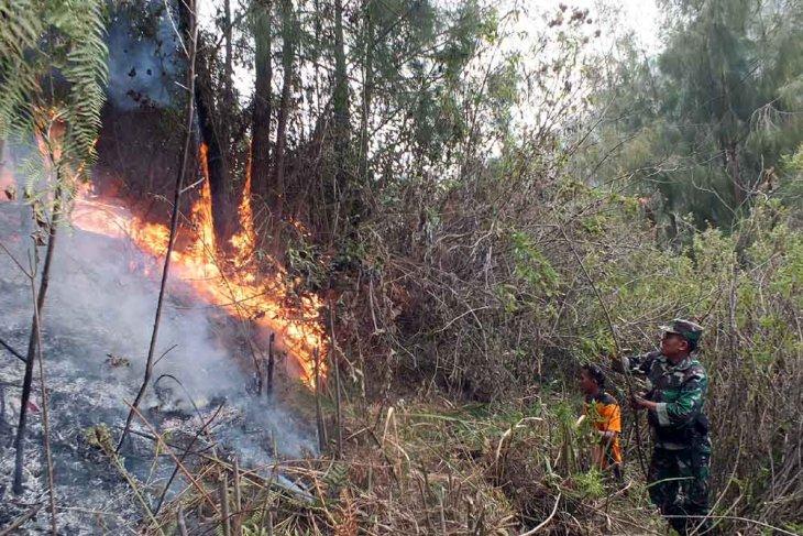 Diduga penyebab kebakaran hutan, seorang petani ditangkap polisi