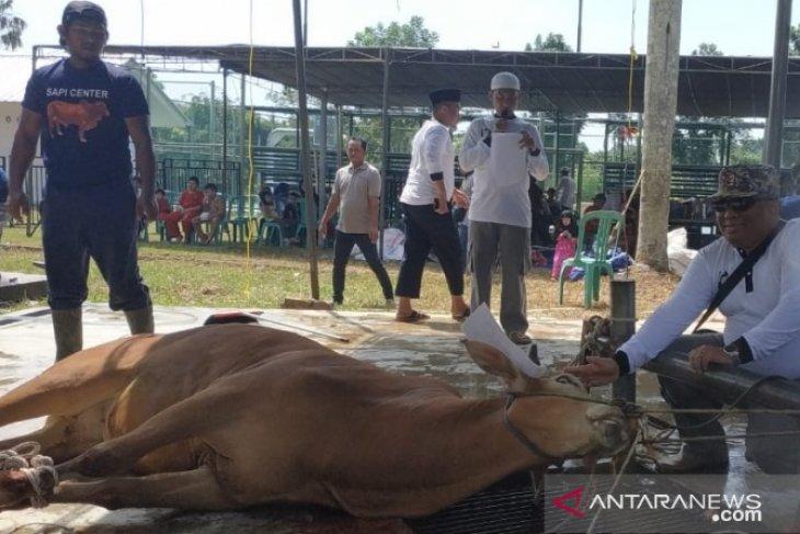 PT Timah bantu desa di Pulau Bangka yang tidak potong hewan kurban